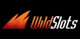 Wild Slots casino review