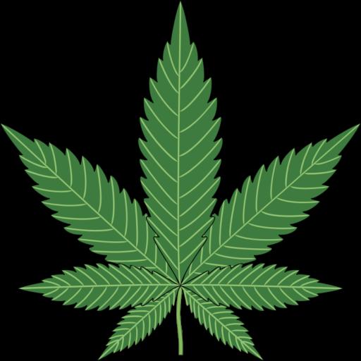 Handling Marijuana Money in Casinos
